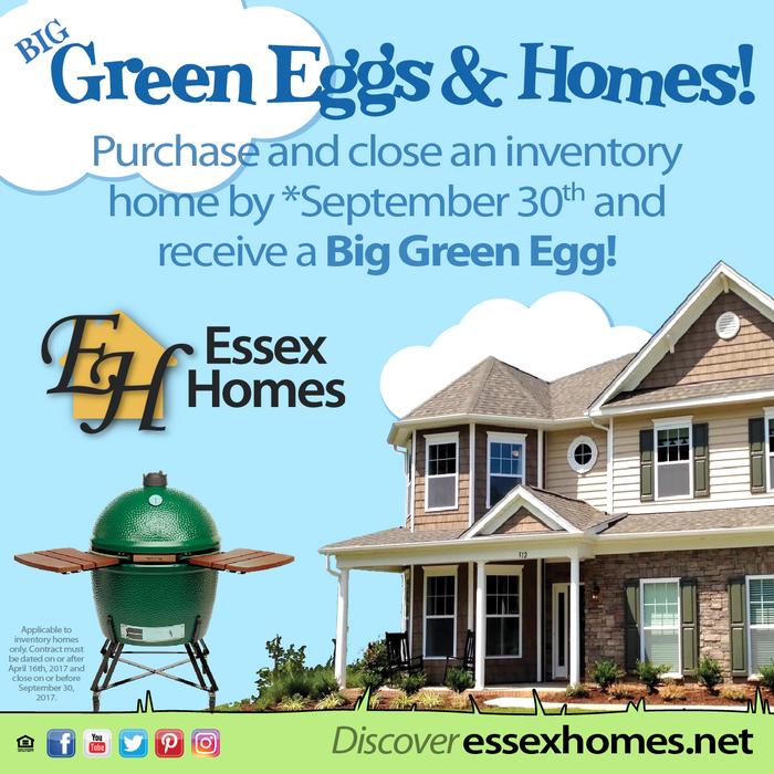 Green Egg Promo
